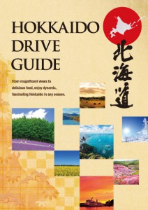 drive_guide